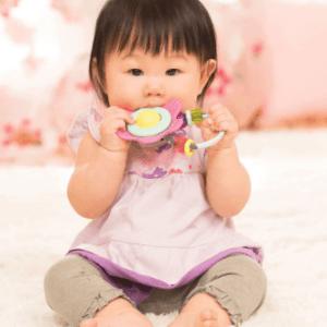 רעשן נשכן לתינוק  – infantino
